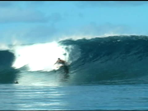 vidéos et rushes de november 9, 2009 professional surfer dropping in and quickly riding out and over the lip of a wave front side bailing into a swandive - bouche humaine