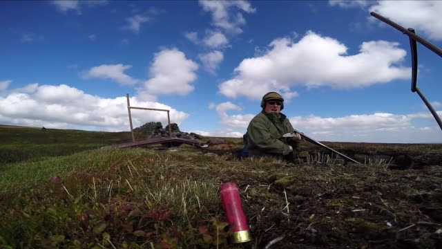 vidéos et rushes de now in just over a week's time grouse shooting enthusiasts will celebrate the socalled glorious twelfth which marks the official start of the hunting... - type de chasse