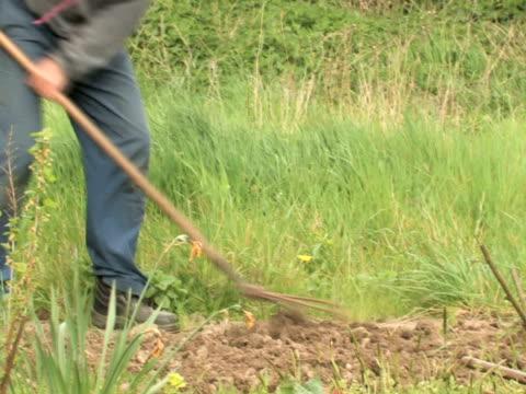 ntsc :庭園作業 - ヒルビリー点の映像素材/bロール