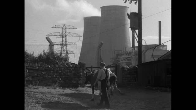 nuclear power plant being built next to farm; 1956 - female animal stock videos & royalty-free footage