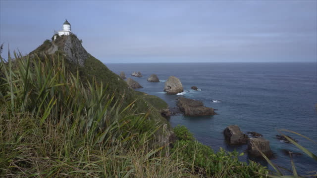 nugget point lighthouse - otago - new zealand - otago region stock videos & royalty-free footage