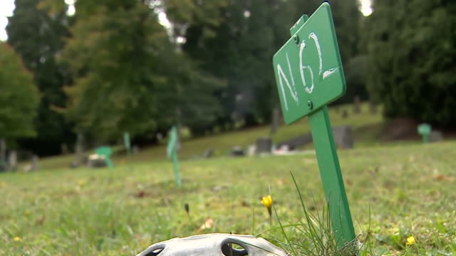 numbered signs marking the graves of unnamed stillborn children - martyr stock videos & royalty-free footage