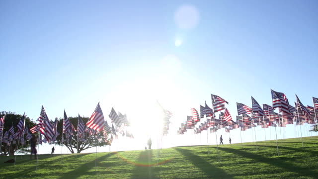 numerous american flags waving in the wind - president stock videos & royalty-free footage