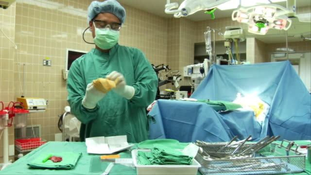 MS, Nurse putting on sterile surgical gloves then assisting surgeon standing  in operating room, Berkeley, California, USA