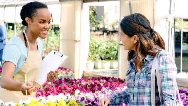 Nursery sales associate helps customer select flowers