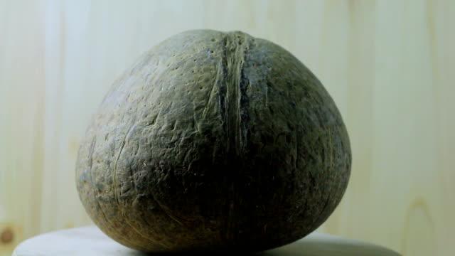 nut kokos roterar på skivtallriken.