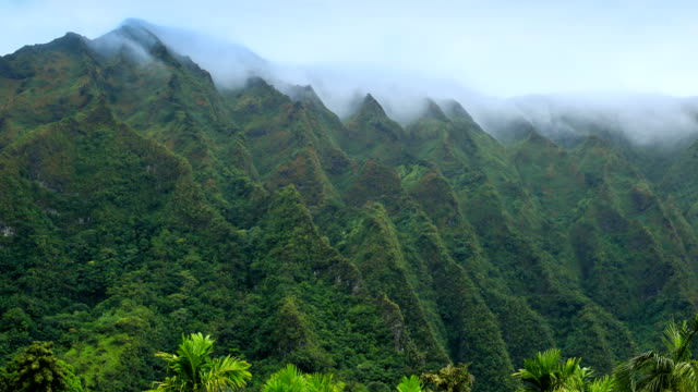 nuʻuanu pali lookout - oahu stock videos and b-roll footage