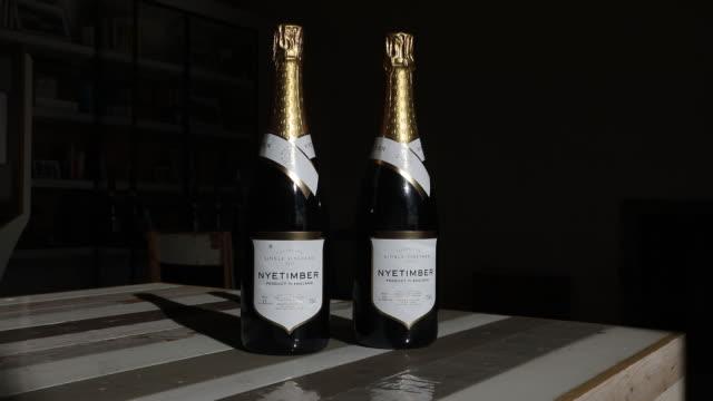 nyetimber vineyard wine grapes harvesting in tillington and west chiltington uk on wednesday october 7 2020 - english language stock videos & royalty-free footage