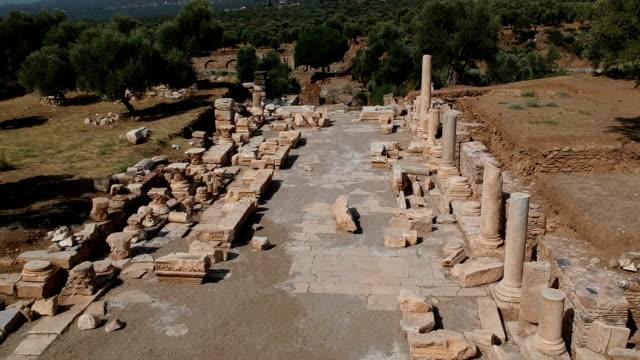 vídeos de stock e filmes b-roll de nysa, aydin, turkey - século 3 ac