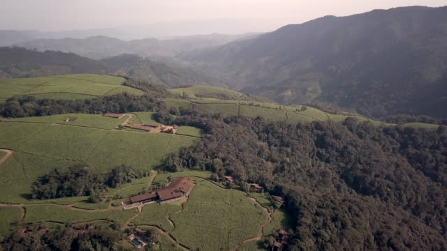 Nyungwe House is set amongst the rich tea-plantations on the edge of Nyungwe National Park