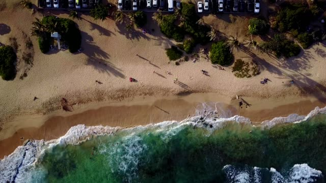stockvideo's en b-roll-footage met oahu, hawaii aerial - waves crashing on the beach - oahu