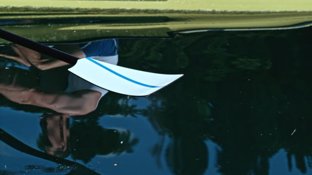 slo mo oar blade striking the water in sunshine - rowing stock videos & royalty-free footage