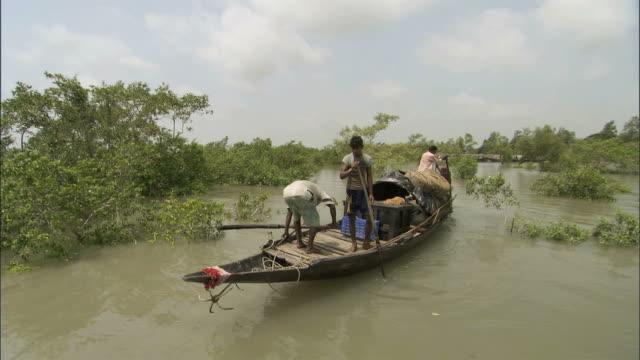 vídeos y material grabado en eventos de stock de ws pov oar cutting water on side of boat among flooded treetops / sunderbans, bangladesh - bangladesh