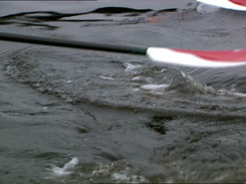 oars splash in the water as boston university's racing crew begins to row. - fluss charles stock-videos und b-roll-filmmaterial