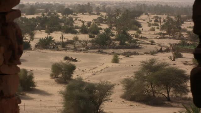 ws zo oasis at desert / quadane, adrar, mauritania - mauritania stock videos & royalty-free footage