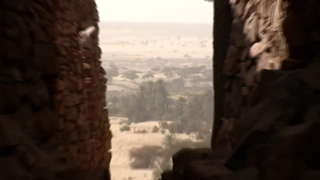 ws zi zo oasis at desert / zouerat, tiris zemmour, mauritania - モーリタニア点の映像素材/bロール
