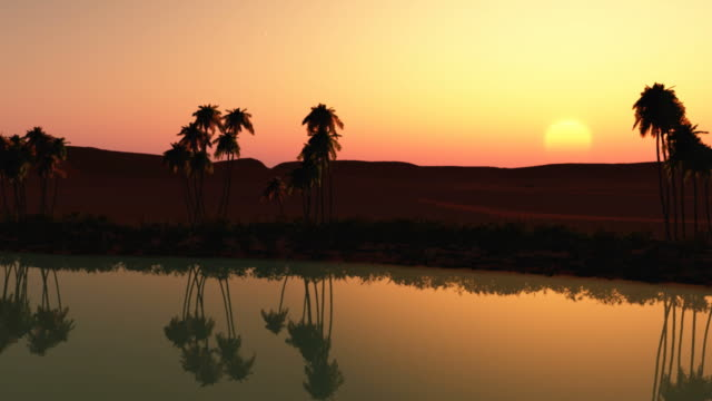 vídeos y material grabado en eventos de stock de oasis al atardecer - oasis desierto