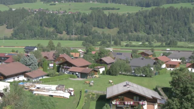 oberhaus village and church from elevated position, graz, styria, austrian alps, austria, europe - 数匹の動物点の映像素材/bロール