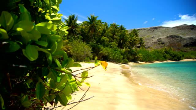 ocean bay lush vegetation atuona hiva oa marquesas - remote location bildbanksvideor och videomaterial från bakom kulisserna