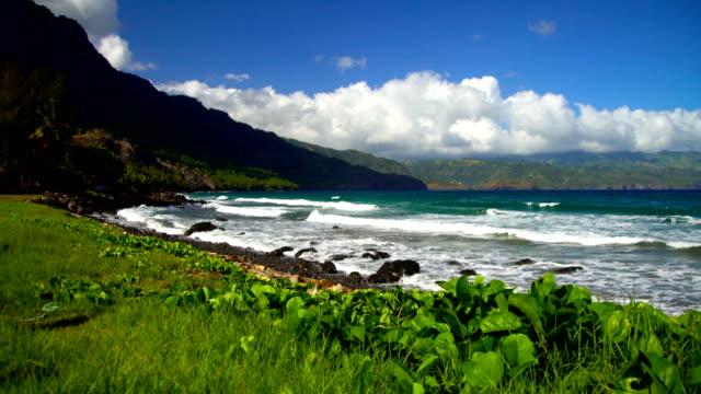 ocean bay lush vegetation taaoa hiva oa marquesas - remote location bildbanksvideor och videomaterial från bakom kulisserna