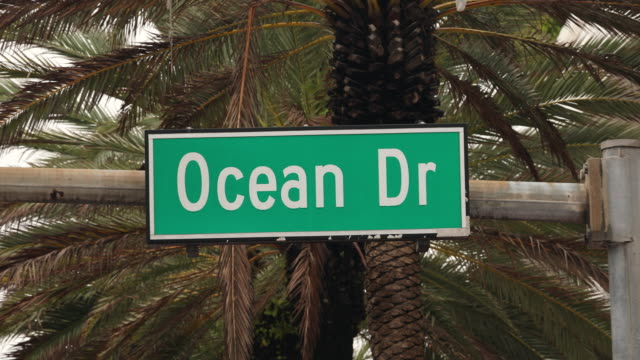 ocean drive in miami by palm trees - sign stock videos & royalty-free footage