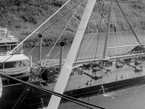1934 b/w montage ms ha ws ocean liner passing through panama canal, freight ship passing by, officer standing on ship's bridge looking at view, jungle trees through open portholes  / panama canal, panama - panama canal stock videos & royalty-free footage