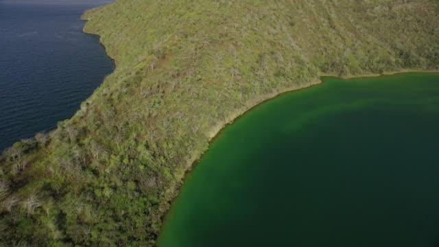 ocean of the galapagos - galapagos islands stock videos & royalty-free footage