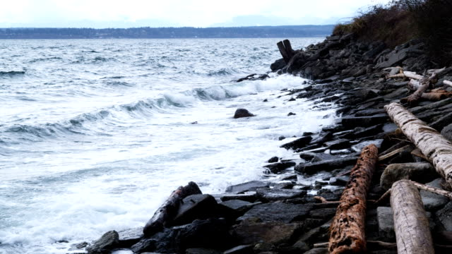 ocean shore - puget sound stock videos & royalty-free footage