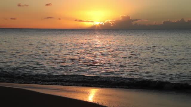vídeos de stock, filmes e b-roll de ocean sunset - grupo pequeno de animais