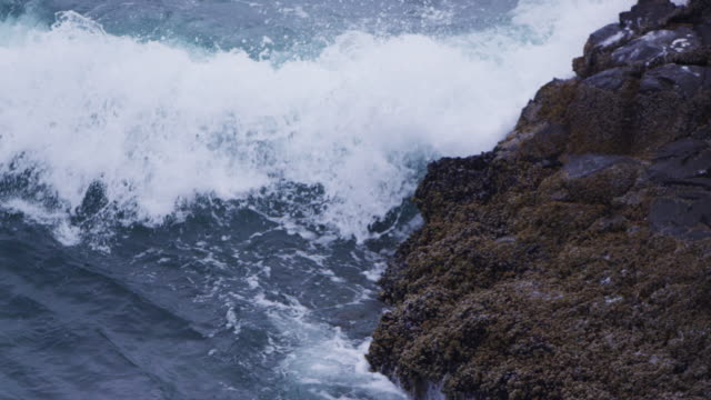 ocean swell breaking on rocks in slow motion. - pazifikküste stock-videos und b-roll-filmmaterial