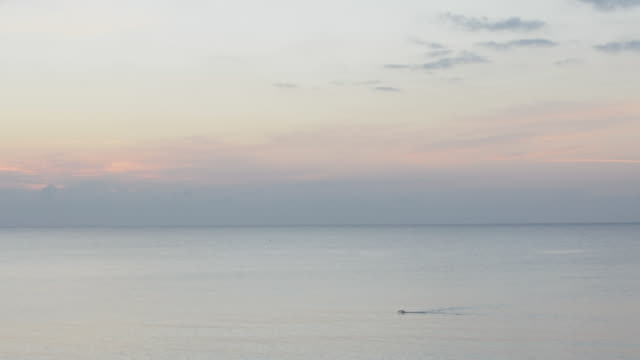 ocean swimmer at sunrise - orizzonte sull'acqua video stock e b–roll