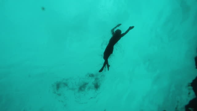 ocean swimmer - freestyle swimming stock videos and b-roll footage