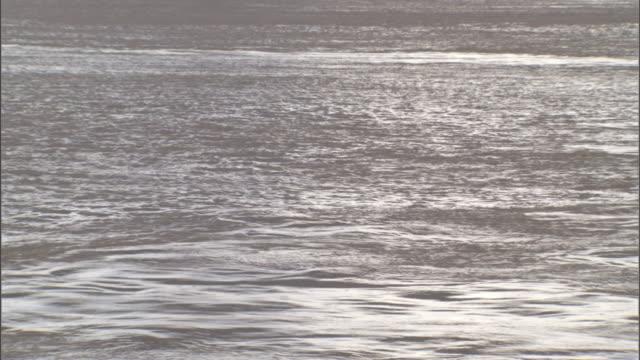 Ocean water ripples.