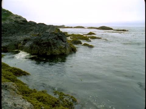 ocean water wash up against rocks on the coast. - gezeitentümpel stock-videos und b-roll-filmmaterial