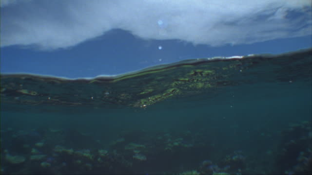 slo mo, cu, ocean wave and ocean floor, tavarua island, fiji - ocean surface level stock videos & royalty-free footage