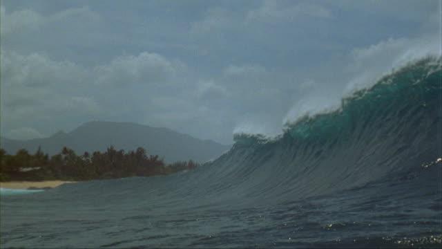 vídeos de stock, filmes e b-roll de slo mo, ms, ocean wave, oahu's north shore, hawaii, usa - tubo de ondas
