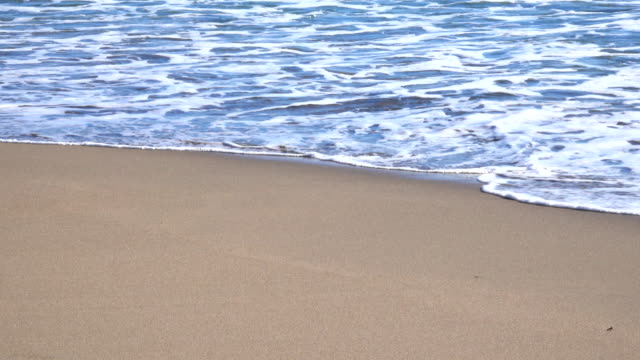 ocean wave on sandy beach - water's edge stock videos and b-roll footage