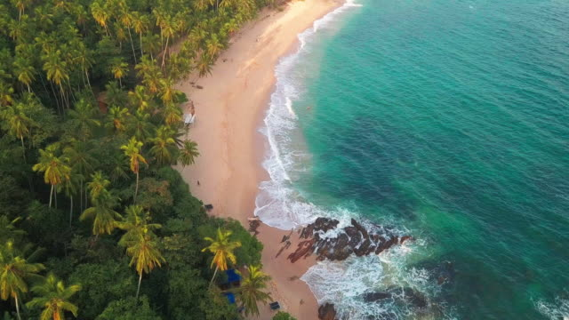 ocean waves at sunset. sri lanka. beautiful tropical beach with palm trees. vacation at sea. drone footage - sri lankan culture stock videos and b-roll footage