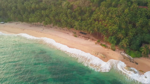 ocean waves at sunset. sri lanka. beautiful tropical beach with palm trees. vacation at sea. drone footage - sri lankan culture stock videos & royalty-free footage