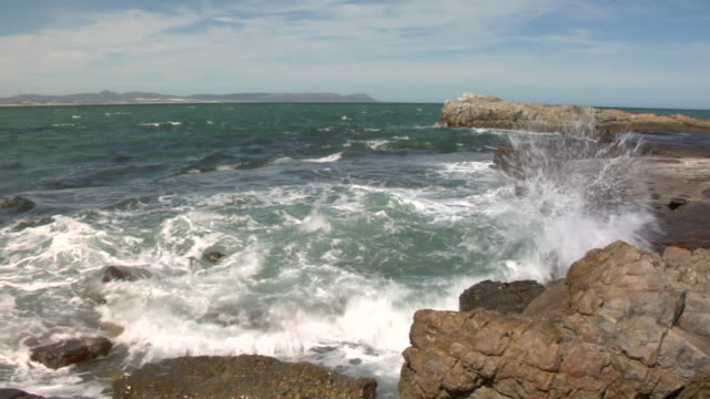 MS, Ocean waves crashing against rocky shoreline, Hermanus, South Africa
