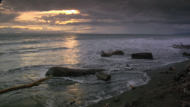 ws ocean waves crashing on driftwood along rugged coast at sunset / costa rica - nordpazifik stock-videos und b-roll-filmmaterial