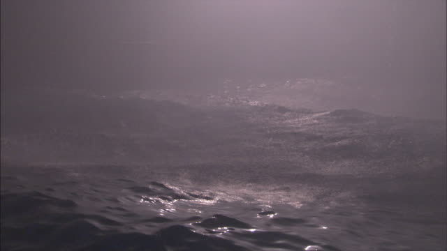 ocean waves heave during a storm. - sea stock videos & royalty-free footage