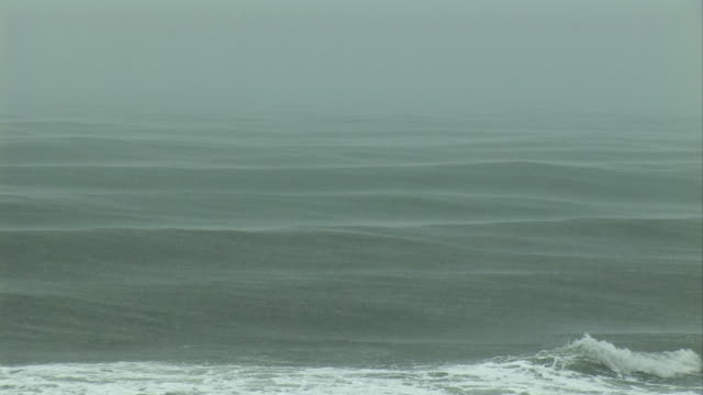 ms, ocean waves in rain, tahiti, french polynesia - frankrikes utomeuropeiska områden bildbanksvideor och videomaterial från bakom kulisserna