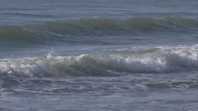 Pan Ocean Waves Myrtle Beach South Carolina United States Stock