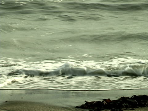 ocean waves washing the beach - land feature stock videos & royalty-free footage