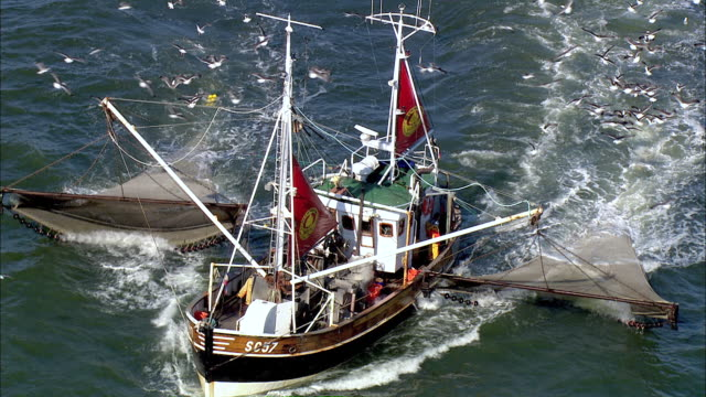 aerial ms oceangulls flying surrounding ship / cuxhaven, schleswig-holstein, germany - fishing industry stock videos & royalty-free footage