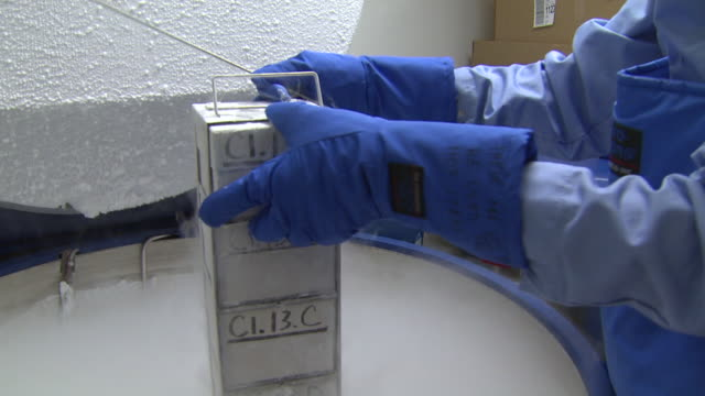 october 17, 2008 museum worker opening a cold storage container, inspecting vials, then closing container / washington, d.c., united states - campione di laboratorio video stock e b–roll