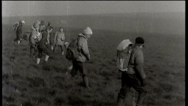 vídeos y material grabado en eventos de stock de october 1965 saddleworth moor: ext b/w footage of line of volunteers searching the moor / volunteer sticking probe into ground / group of volunteers... - erial