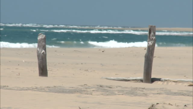 October 20 2010 WS Whitecapped ocean waves beyond two wooden posts sticking out of sandy beach / Mozambique