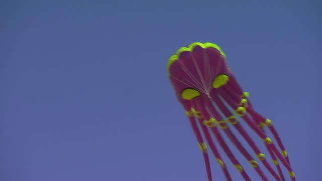 Octopus kite flying